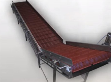 Food & Beverage conveyor