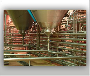 sanitary process piping
