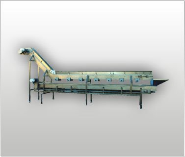 Vegetable Coring Conveyor