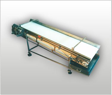 USDA / FDA Sanitary Design Conveyor