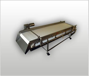 USDA / FDA Sanitary Design Conveyor 2