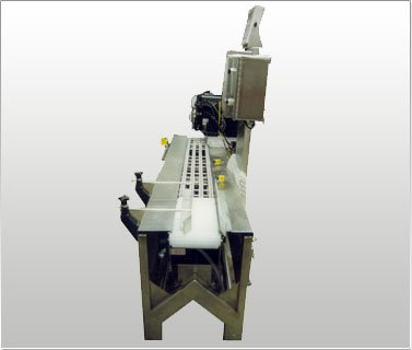 Weigh Scale Labeling Conveyor