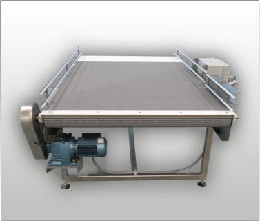 Accumulation & Surge Conveyor