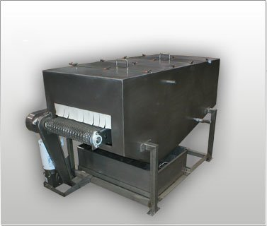 CIP Wash Conveyor System